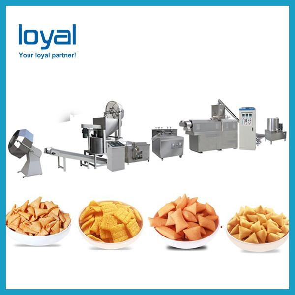 2018 China Best price Screw,Shell extruded fried snacks making machine #3 image
